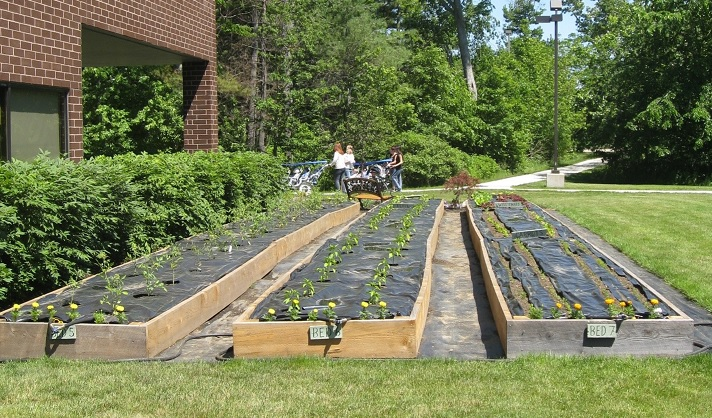 Timberland Grows Vegetables, Funds, and Community   3BL Media