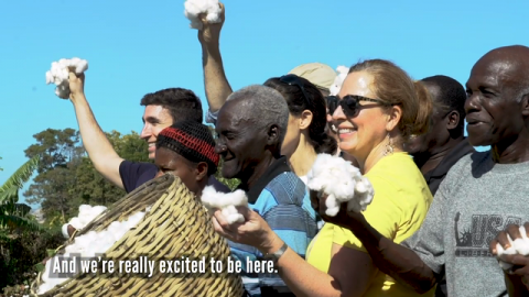 Video | Watch Timberland and the Smallholder Farmers Alliance Join Farmers in the Field for Haiti's First Commercial Cotton Harvest in 30 Years