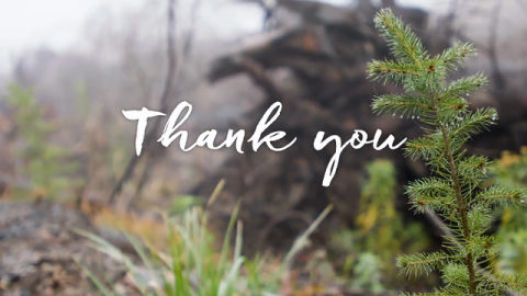 The Arbor Day Foundation Is Pleased to Share Its 2020 Annual Report