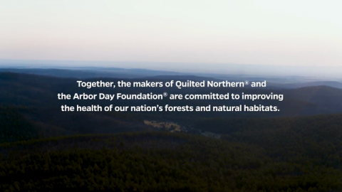 The Arbor Day Foundation and the Maker of Quilted Northern® Partner to Plant 2 Million Trees