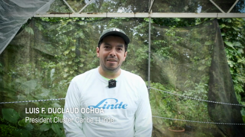 El Yunque National Forest Advances With the Arbor Day Foundation