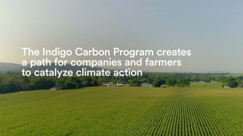 The Farming We Need for Earth Day