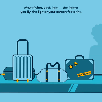 Cool Effect and American Airlines Celebrate One Year of Partnership and Carbon Emissions Reductions