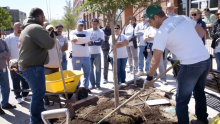 VIDEO | See How Texas Trees Foundation and Alliance Data Are Working to Reverse Dallas' Rising Temps