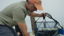 VIDEO   Helping Restore Local Heritage on Long Island