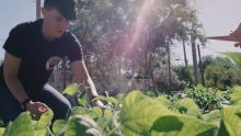 VIDEO | Beneficial Beans Garden Provides Valuable Life Skills for Adults with Autism