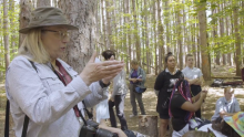 Students Transform 10-Acres of Forest & Highlight Forest Protection