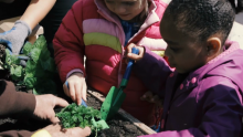 VIDEO | The Scotts Miracle-Gro Foundation to Connect One Million Children to Fresh Food in Partnership with The National Head Start Association