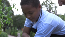 Nasir's #GardenStory: Teaching Other Kids Through His Love of Gardening