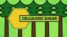 Cellulosic Sugars: The Latest Domtar Innovation
