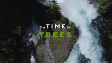 The Arbor Day Foundation Launches the Time for Trees™ Initiative to Plant 100 Million Trees by 2022