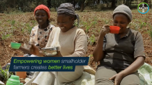 Women Smallholder Farmers Rising to the Challenge: Firsthand Perspectives from Kenya and Thailand
