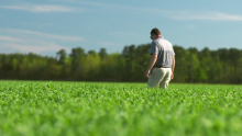 Meet Adam Lassiter, Agronomist for Smithfield Foods