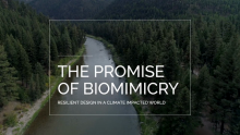 "Join the Live Watch Party for ""The Promise of Biomimicry"" Premiering January 23"