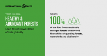 Vision 2030: Healthy and Abundant Forests