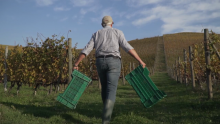 FPT Industrial and Fontanafredda Join Forces to Produce the World's First Zero Emission Barolo Wine
