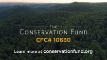 Addressing Complex Issues With Smart Conservation