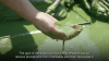 Video | The Scotts Miracle-Gro Company: Securing Clean Water for the Future