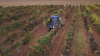 CNH Industrial and Zasso Deliver Chemical Free Weed Control