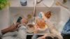 P&G Brands Dawn and Swiffer Invite Americans To Come Together and Close the Chore Gap at Home in New Campaign