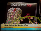 The Breast Form Fund's Show Us Your BRA! Auction & Gala this Saturday October 30th @ Look Park in Florence MA