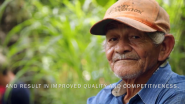 Learn More About Lutheran World Relief's Work to Help Small Cocoa Farmers and Cooperatives in Central America
