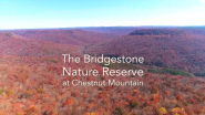 Video | Bridgestone Donated Nearly 6,000 Acres to Nature Conservancy in Tennessee