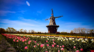 Schneider Electric Helps City of Holland Adopt 40-year Community Energy Plan