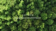 HP Partners with World Wildlife Fund on Forest Protection and Restoration