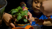 10 Million Kids: Why We're Committed to GroMoreGood