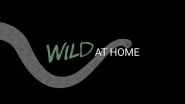 EarthX Launches Wild at Home the First Nature Reserve