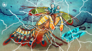 Helicoid Industries, Ray of Hope Prize Finalist, Designs With Inspiration From Mantis Shrimp