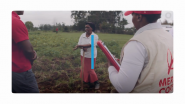 Learn How a Cisco Nonprofit Partner Pivoted to Help Smallholder Farmers During COVID-19