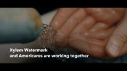 Americares, Xylem Partnership Delivers Clean Water And Sanitation To 3.5 Million People In 10 Countries In 2020, Aiding COVID-19 Response