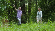 """Meet the """"Mother of Forests"""" Advocating for Responsible Forestry Practices"""
